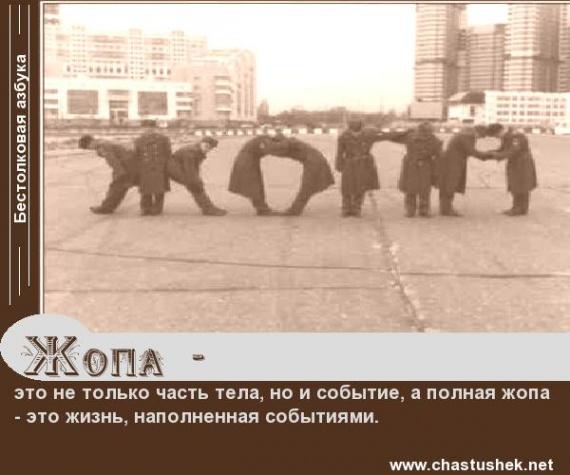 skolko-stoit-novaya-zhopa